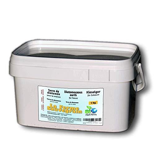 Terra di diatomee per cimici del letto, formiche, scarafaggi e ragni - trattamento naturale - 1 kg